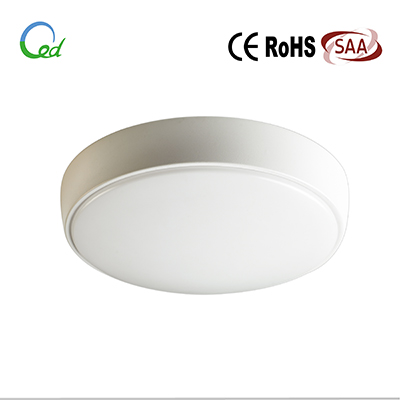 LED osyter light