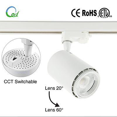 LED oyster light